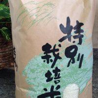 喜多方産コシヒカリ